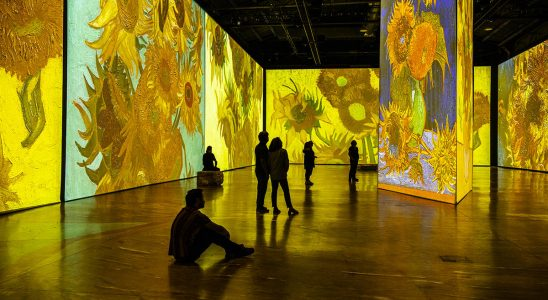 V USA můžete vstoupit do obrazů Vincenta van Gogha 5