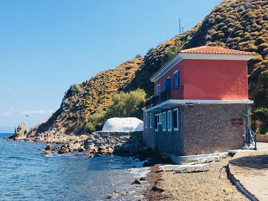Lesbos – symfonie kultury, jídla a přírodních krás 4